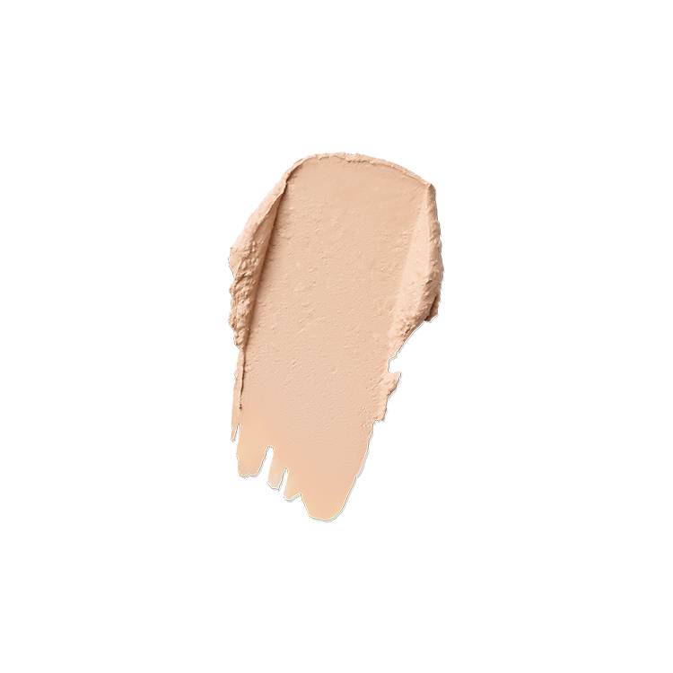 SMOOTHING COVER COMPACT FOUNDATION  <br />SPF50+ PA++++1